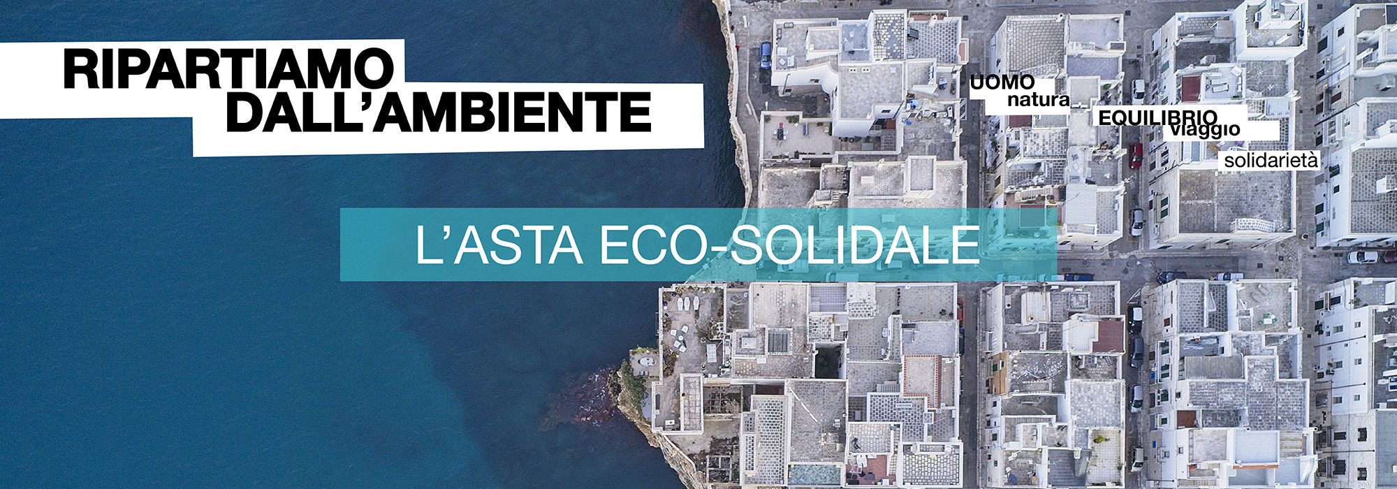 Asta Eco Solidale 2020